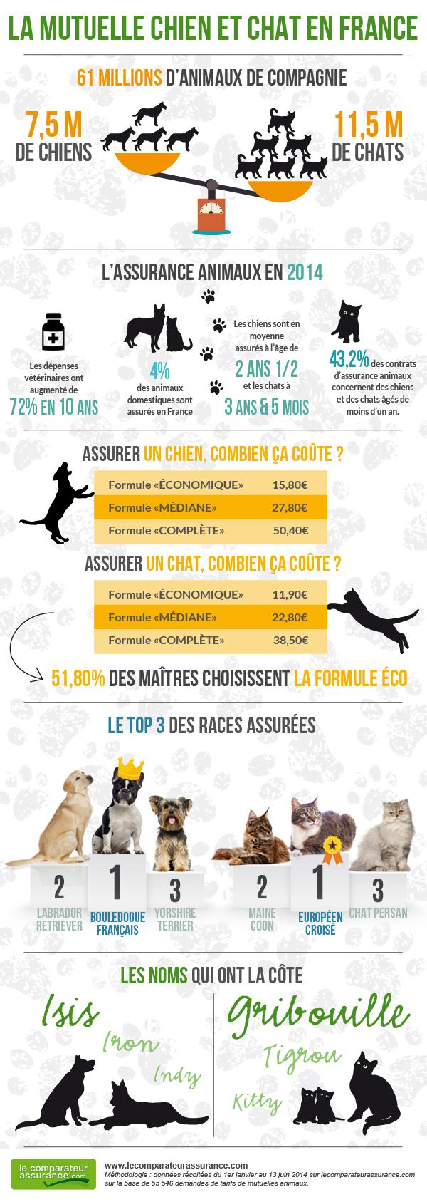 assurance animaux en France